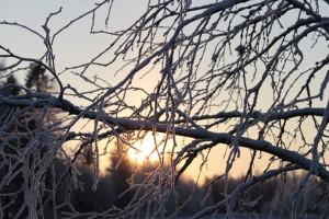 talven-tuloa